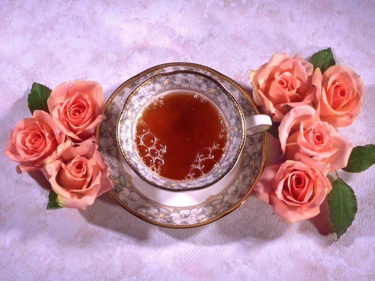 Loose Leaf Black Tea & its Health Benefits