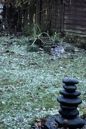 Snow!, Snow!, Full Body Massage Service