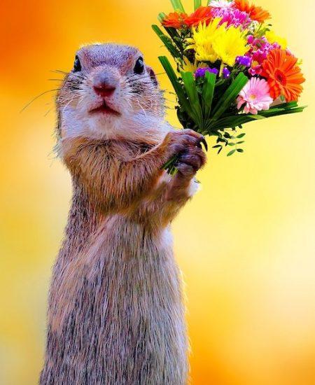 Be my Valentine, Be My Valentine, Full Body Massage Service